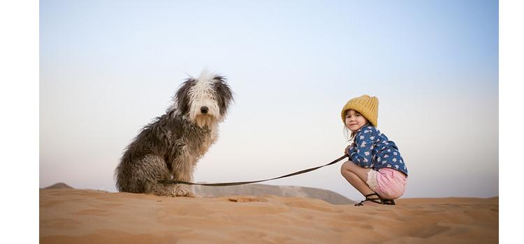 Animais de estimação e as crianças