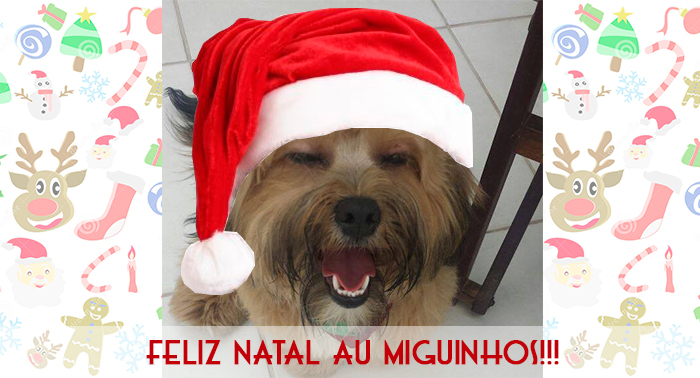 Blog da Farofa – Correria do Natal