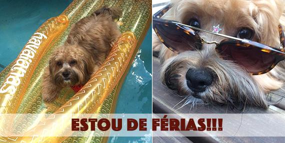 Blog da Farofa – Continuamos de férias!!!