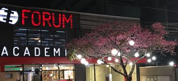 Forum Academia